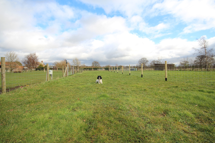 Image showing Dog Paddock at Field House Farm CL